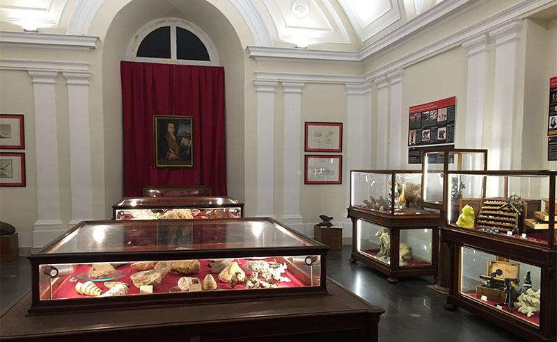 Museo dei Saperi e delle Mirabilia siciliane