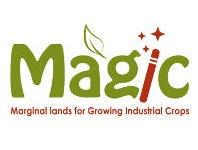 Logo del progetto magic