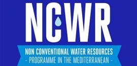 """Logo del Progetto """"NCWR"""""""