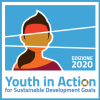 Logo Youth in Action 2020